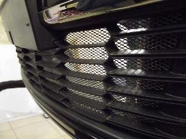 Комплект защитных сеток радиатора 999PLJ11GNET